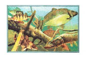 Rohož Delphin AQUA 60x40cm