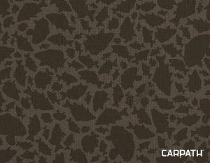 Delphin GT8 Carpath
